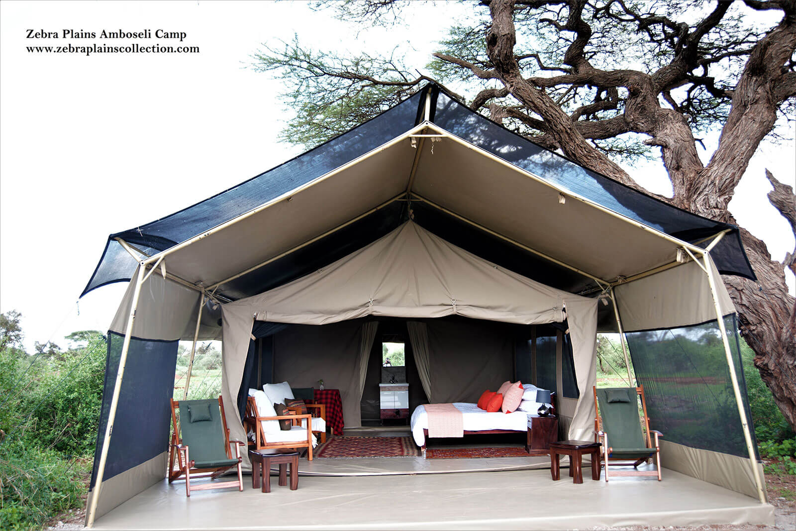 Amboseli zebra plains camp